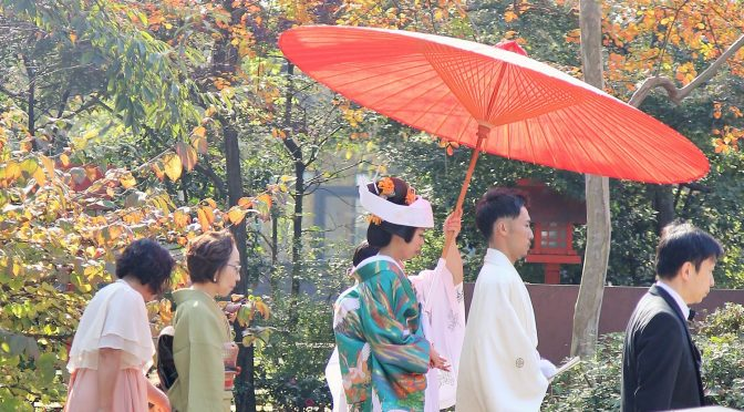 秋色に染まり始めた冠稲荷神社の境内。本日の花嫁さんはエメラルドグリーンの打掛をまとい、朱赤の大笠を差し掛けられ、神前へと進まれました。