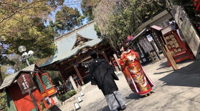 【春のフォトウェディング】桜満開の中行われた写真の結婚式をご紹介!!