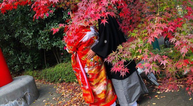 【イチョウの絨毯で素敵な1枚を】秋のフォトウェディングが行われました!!