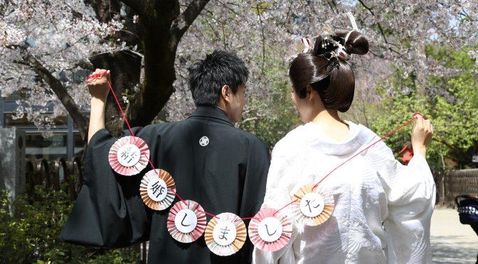 【桜の下でのフォトウェディング✿】先輩花嫁様をご紹介します♪