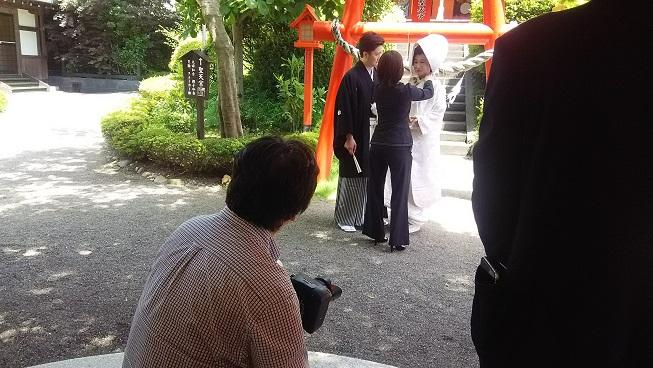 今日も前撮りの新郎新婦様がいらっしゃいました。境内での撮影は基本的には皆さま自由です(*^_^*)
