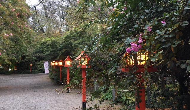 本日は寒い一日となりました。まだ百日紅の花はきれいに咲いています。神様紹介:素蓋鳴神をご紹介します(3)