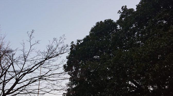 3月17日(日)は冠稲荷神社にて初午大祭を行います!事務的なお話しにはなりますが、本日は講帳作りをいたしました。