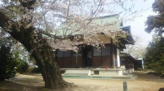 本日の冠稲荷神社は、昨日と比べますと落ち着いておりました。早朝から兼務神社において春祭りが行われ、宮司、権宮司共に早朝から神社を周っておりました。