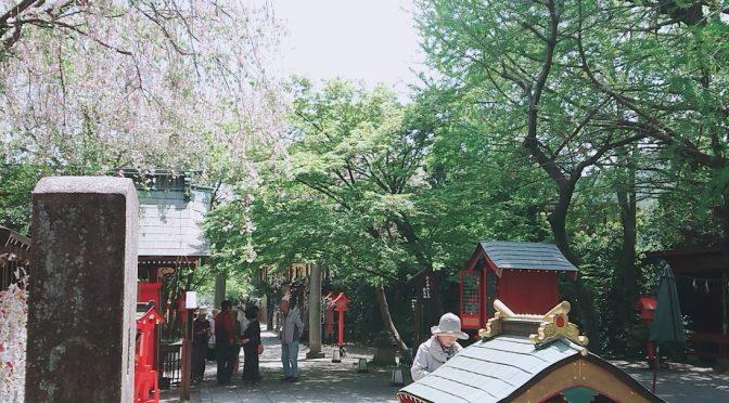 本日は立ち寄りの観光様がご来社くださり、自由に冠稲荷神社の境内を見て頂きました*^^*平成最後の御朱印やそのほかの御朱印もたくさんの方が見てくださり、大変うれしく思いました^^