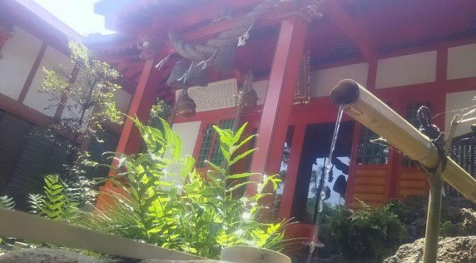 日頃からブログやインスタでご紹介しております冠稲荷神社の自然ですが、定期的な剪定等によって樹木の健康と境内の環境を保っております^^今朝は早くからベテランの職人さんが、神業でもって本殿裏の大きな樫の木の剪定をしてくださいました!