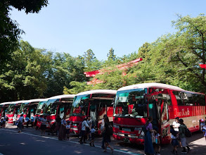 本日は少し前まで雨だったのがウソみたいな晴天でしたね!冠稲荷神社に隣接するいなり幼稚園は東武動物公園に遠足に行かれました!