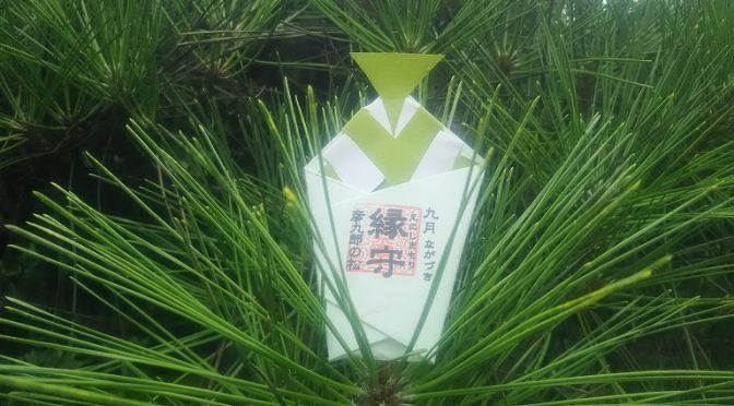 境内の四季を彩る花や葉を込めて巫女が奉製する「縁守」は人と人、幸福、仕事、あらゆる良き縁を結ぶ、毎月100体限定の御守です^^ 只今、奉製中の9月の縁守は「彦九郎の松」の葉を込めてお授けいたします♪