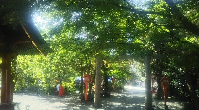 本日も清々しい一日でした!冠稲荷神社の境内には24時間いつでもお入りいただけます。出勤前やお散歩がてら、爽やかな早朝にお日様の光を浴びながらお参りいただくのもオススメです♪さて、本日も可愛らしく、凛々しいお子様が七五三祈祷にご来社くださいましたので、ご紹介させていただきます!