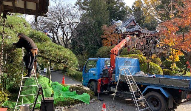 昨日、本日と㈱東園芸様が境内の木の剪定をしてくださいました。境内がとてもすっきりとして、前より空が見える面積が増えました\(^o^)/