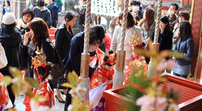 木瓜は遠目でも大きく膨らんだ蕾の様子が分かるようになって来ました。開花も進んでおります♪この分ですと、3月22日(日)の初午大祭を待たずに満開を迎えそうです。初午大祭では特別祈祷の他、稚児行列や獅子舞の奉納が行われ、境内はお祭りらしい華やかな雰囲気に包まれます(^^)