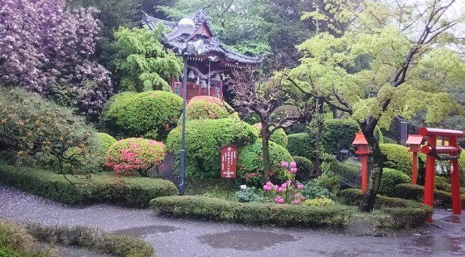 冷たい雨の降る静かな土曜日でした。一刻も早く、事態が終息に向かいますよう、心より祈念いたします。