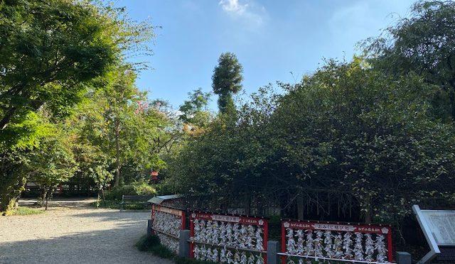 本日は暑い中でも爽やかな風が吹いておりました。境内の葉も少しずつ落ち、秋冬が近づいていることを感じさせてくれます。
