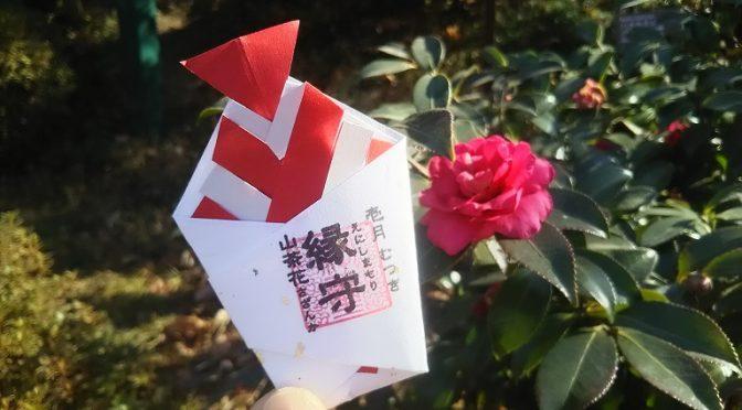 令和3年1月にお授けする「縁守」は境内の山茶花(さざんか)を込めております♪