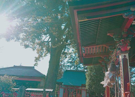 本日の冠稲荷神社は強風が吹いておりました。