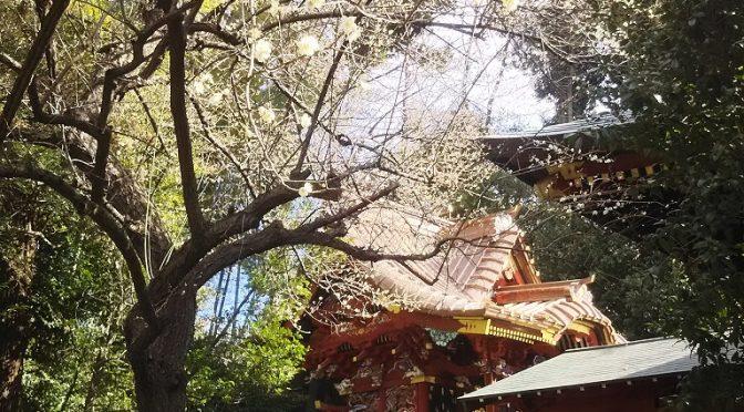 本日2月17日、祈年祭が斎行されました。